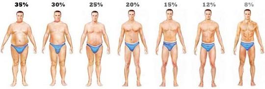 男性體脂率