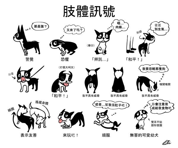 狗狗行為圖解 (Illustrations Dog Behavior) | 逍遙文工作室