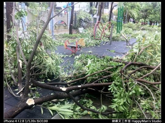 被蘇力颱風掃過的校園 (10)