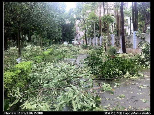 被蘇力颱風掃過的校園 (11)