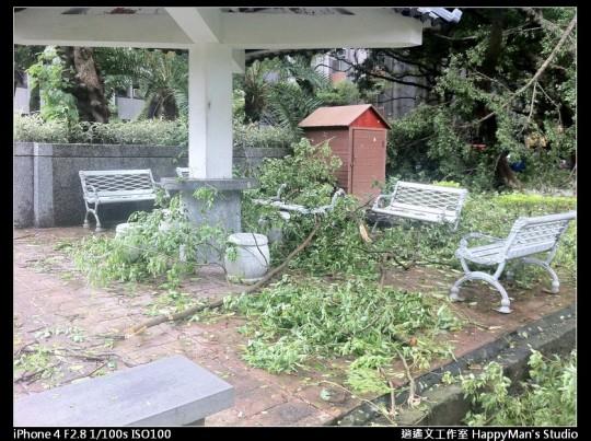 被蘇力颱風掃過的校園 (14)