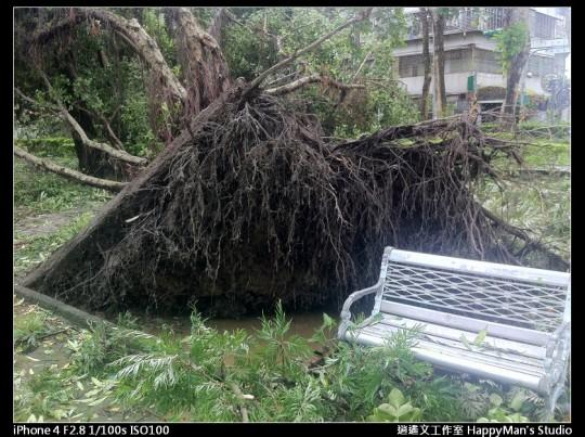 被蘇力颱風掃過的校園 (15)