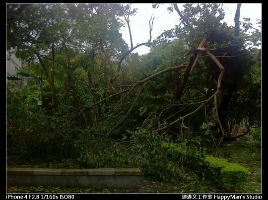 被蘇力颱風掃過的校園 (17)