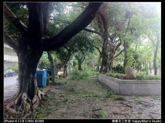 被蘇力颱風掃過的校園 (19)
