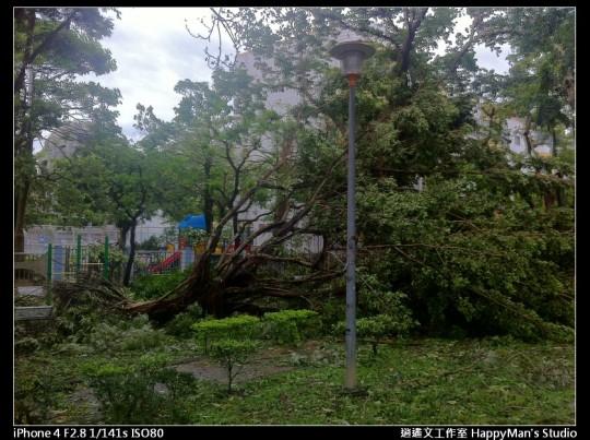 被蘇力颱風掃過的校園 (20)