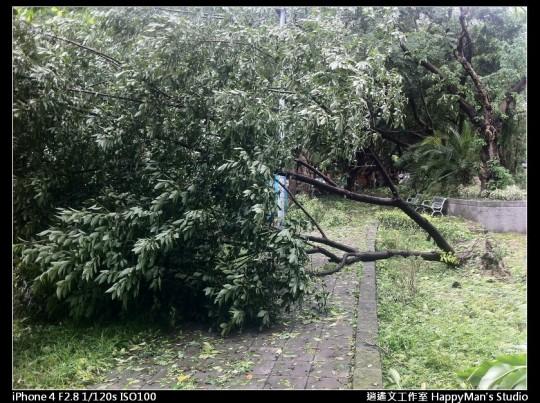 被蘇力颱風掃過的校園 (21)