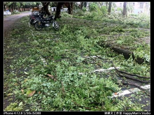 被蘇力颱風掃過的校園 (23)