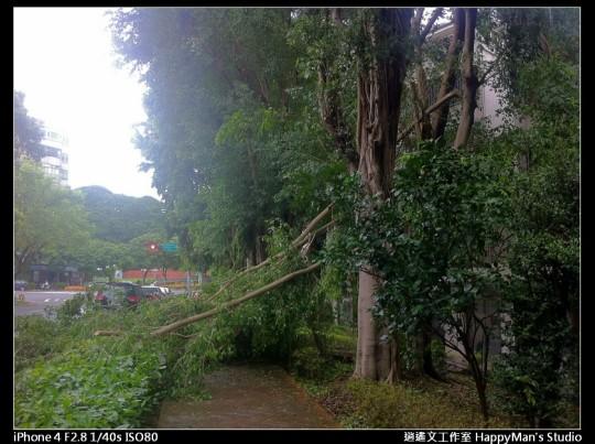 被蘇力颱風掃過的校園 (24)