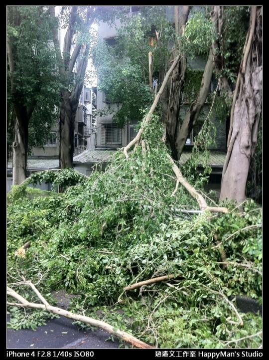 被蘇力颱風掃過的校園 (25)
