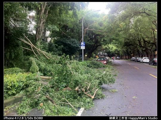 被蘇力颱風掃過的校園 (26)