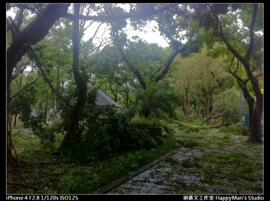 被蘇力颱風掃過的校園 (5)