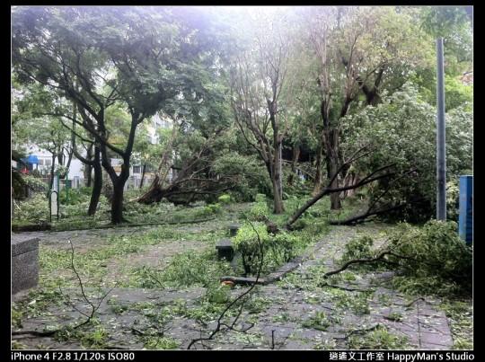 被蘇力颱風掃過的校園 (7)