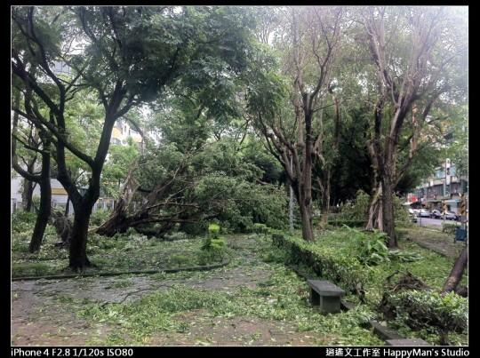 被蘇力颱風掃過的校園 (8)