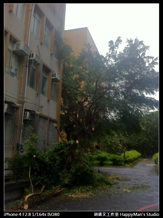 被蘇力颱風掃過的校園