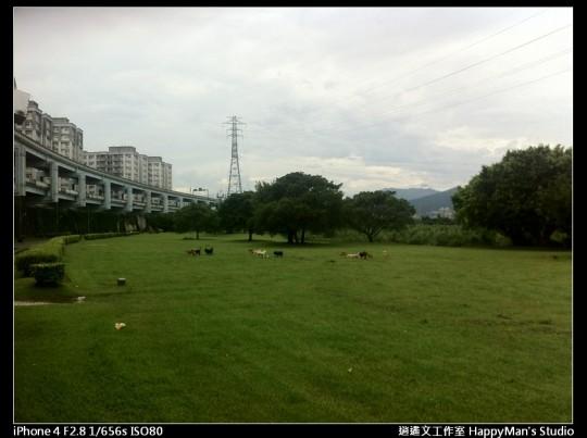 被蘇力颱風掃過的福和河堤 (1)
