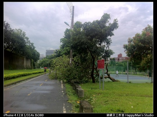 被蘇力颱風掃過的福和河堤 (10)