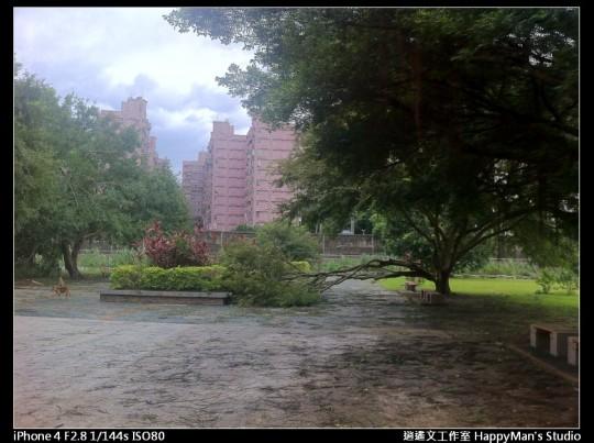 被蘇力颱風掃過的福和河堤 (12)