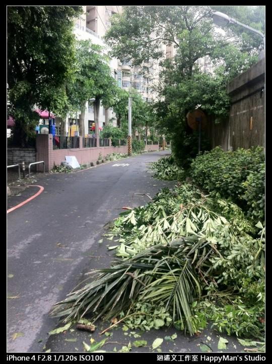 被蘇力颱風掃過的福和河堤 (24)