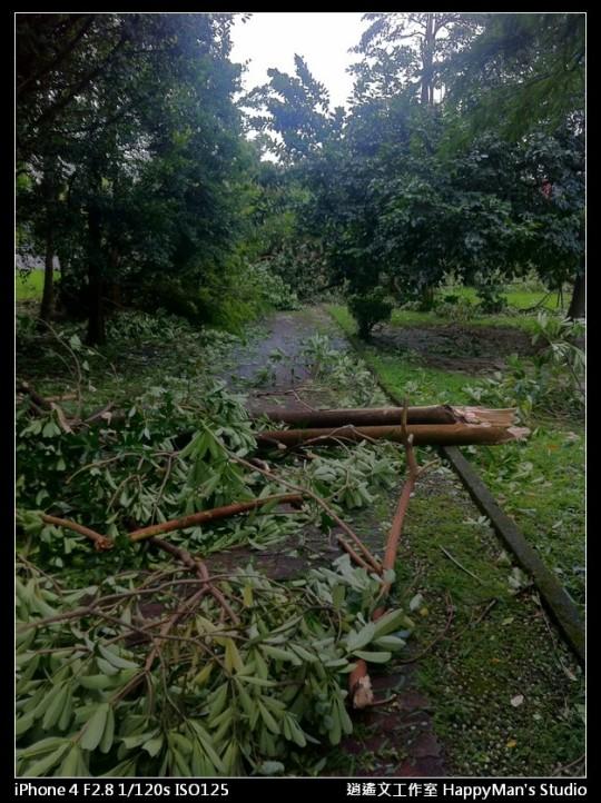 被蘇力颱風掃過的福和河堤 (25)