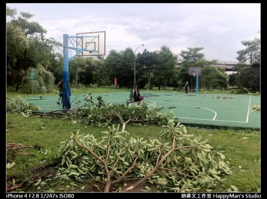被蘇力颱風掃過的福和河堤 (29)