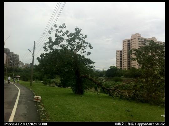 被蘇力颱風掃過的福和河堤 (3)