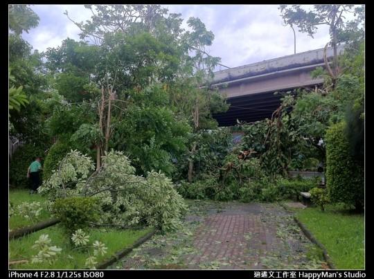 被蘇力颱風掃過的福和河堤 (30)