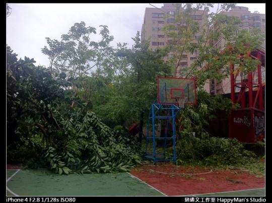 被蘇力颱風掃過的福和河堤 (31)