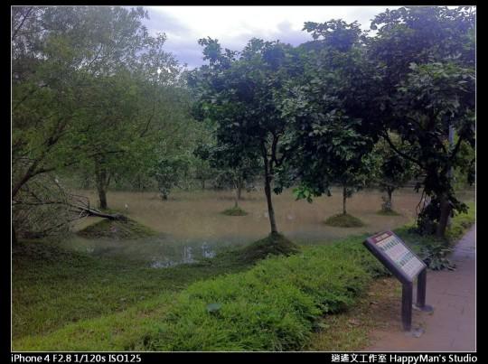 被蘇力颱風掃過的福和河堤 (40)