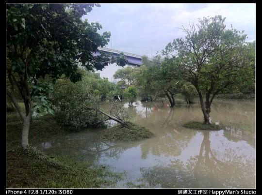 被蘇力颱風掃過的福和河堤 (41)