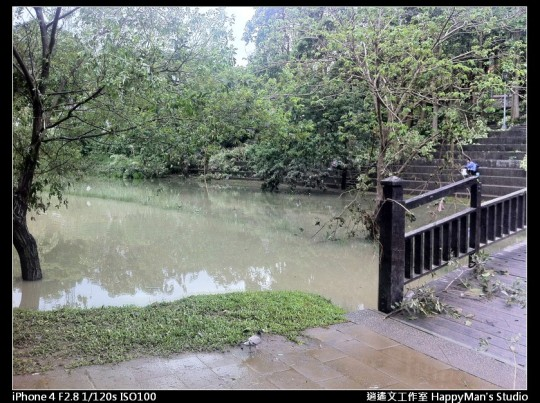 被蘇力颱風掃過的福和河堤 (43)