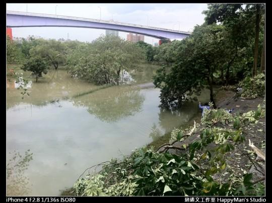 被蘇力颱風掃過的福和河堤 (47)