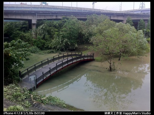 被蘇力颱風掃過的福和河堤 (48)
