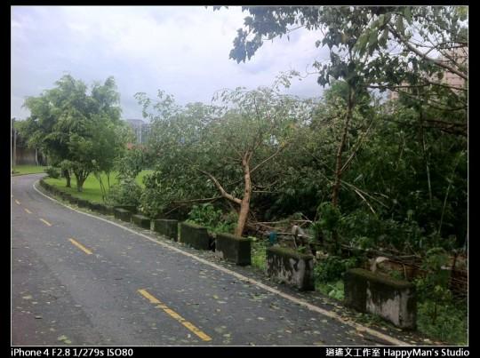被蘇力颱風掃過的福和河堤 (5)