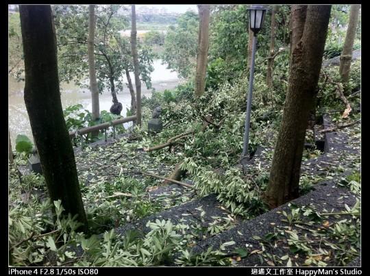 被蘇力颱風掃過的福和河堤 (50)