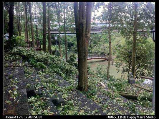 被蘇力颱風掃過的福和河堤 (51)