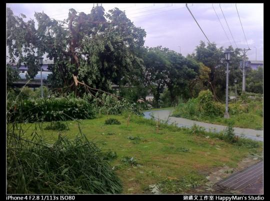 被蘇力颱風掃過的福和河堤 (52)