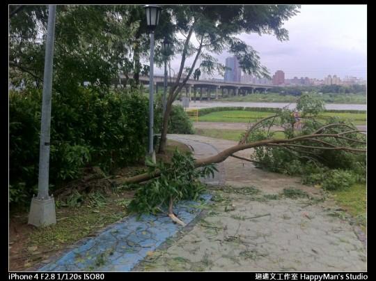 被蘇力颱風掃過的福和河堤 (54)