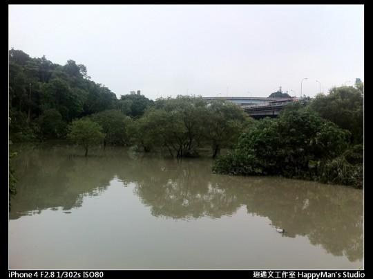 被蘇力颱風掃過的福和河堤 (60)