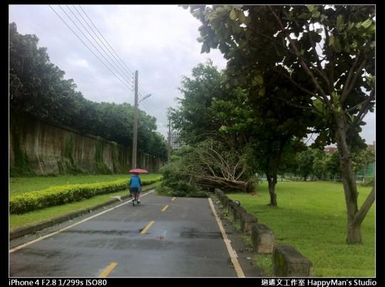 被蘇力颱風掃過的福和河堤 (8)