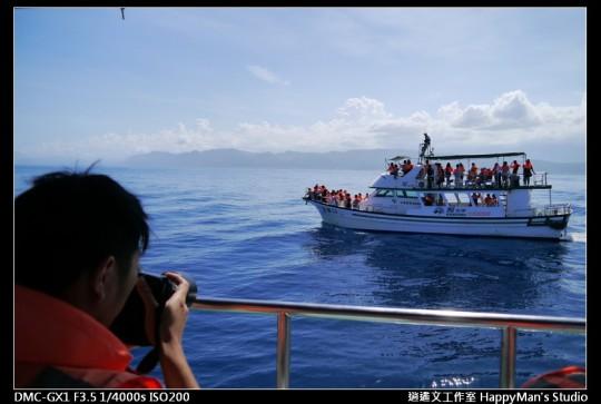 花蓮花蓮 鯨世界賞鯨 (10)