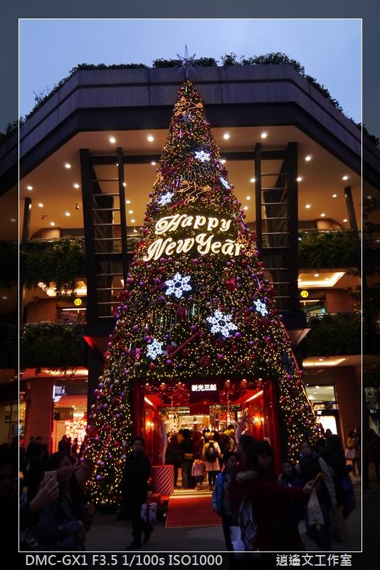 2013年蒐集聖誕樹 (1)