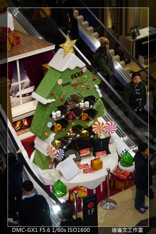2013年蒐集聖誕樹 (5)
