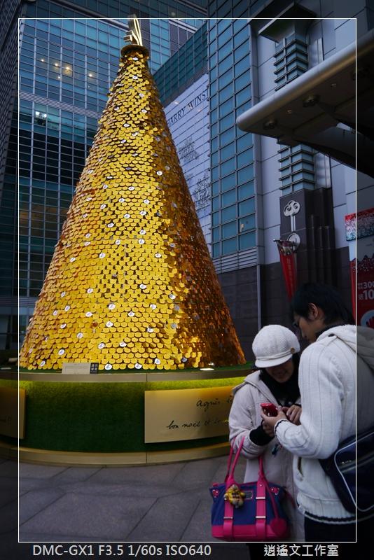 2013年蒐集聖誕樹 (6)