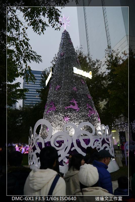 2013年蒐集聖誕樹 (7)