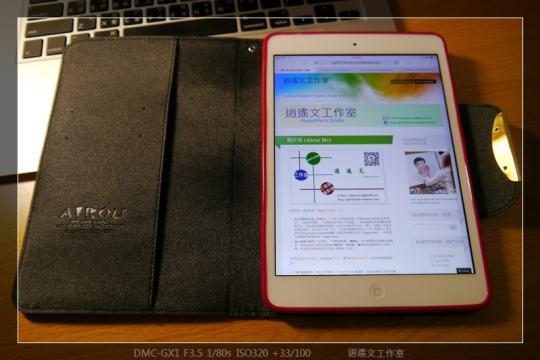 寫真 iPad mini 保護殼 (8)