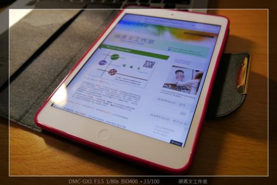 寫真 iPad mini 保護殼 (9)