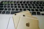 iPhone 6 &6+12