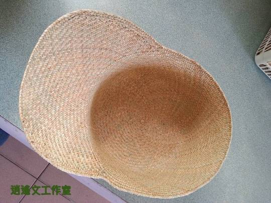 鴨舌草帽4