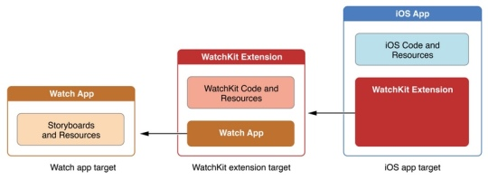 watch app target structure