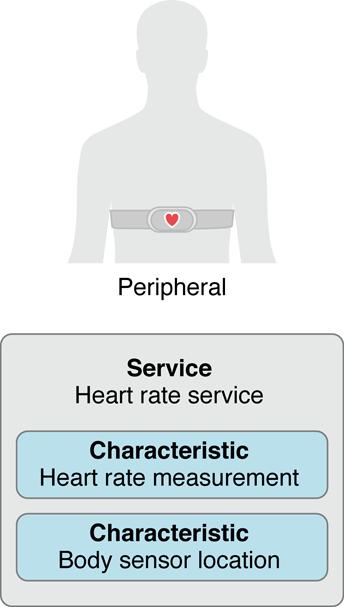 bluetooth peripheral service characteristics